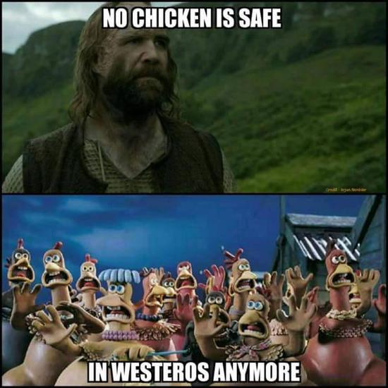 GOT Hide the Chickens