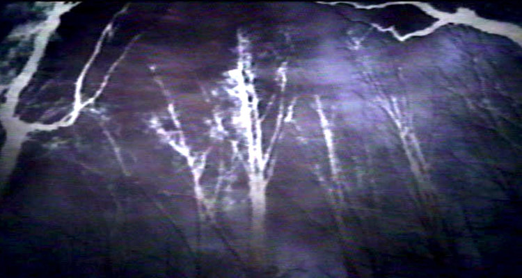 Blair Witch 2016 Spoilers