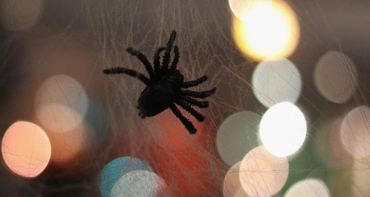 Cheap Halloween Spider Decorations