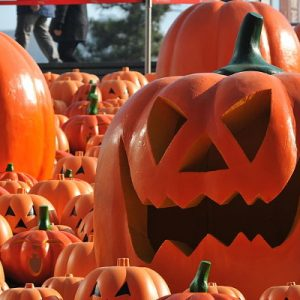 is carving out pumpkins to make your own so get your tools out and get started