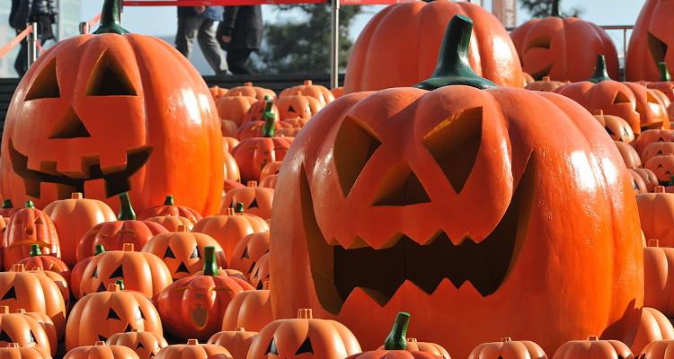 DIY Halloween Pumpkin Carving Ideas