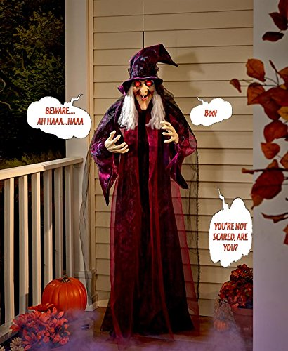 7 Haunting Witch Door Decorations for Halloween ~ 035658_Halloween Animated Door