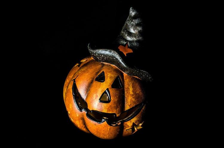 pirate pumpkin halloween idea