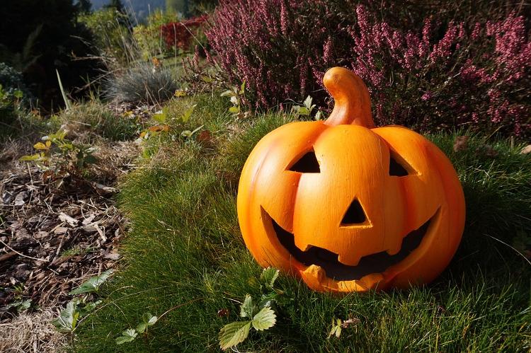 smile pumpkin halloween ideas