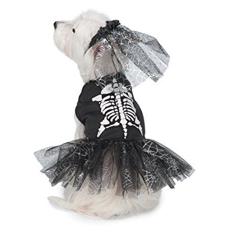 spooky pet halloween costume