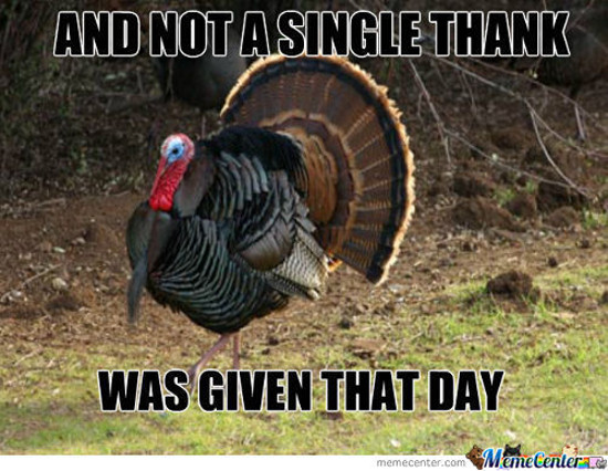 funniest thanksgiving memes