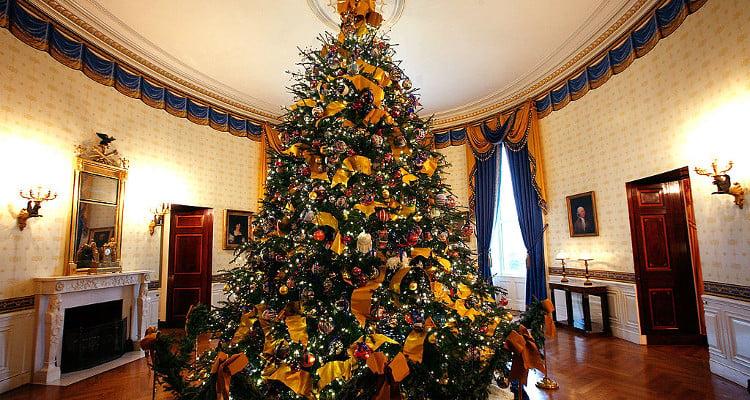 5 White Christmas Trees
