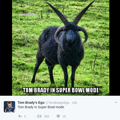 funniest tom brady memes
