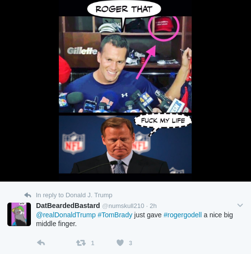 funny roger goodell memes
