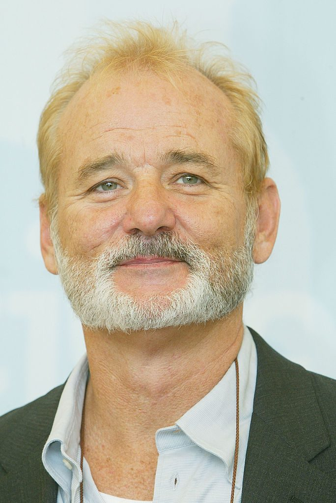 Bill Murray Roles