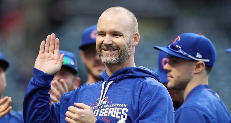 David Ross Net Worth