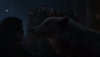 "Where Is Ghost on ""Game of Thrones?"""
