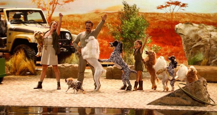 Pompeyo Family Dogs