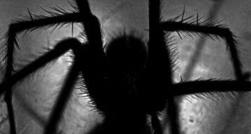 scary halloween ideas