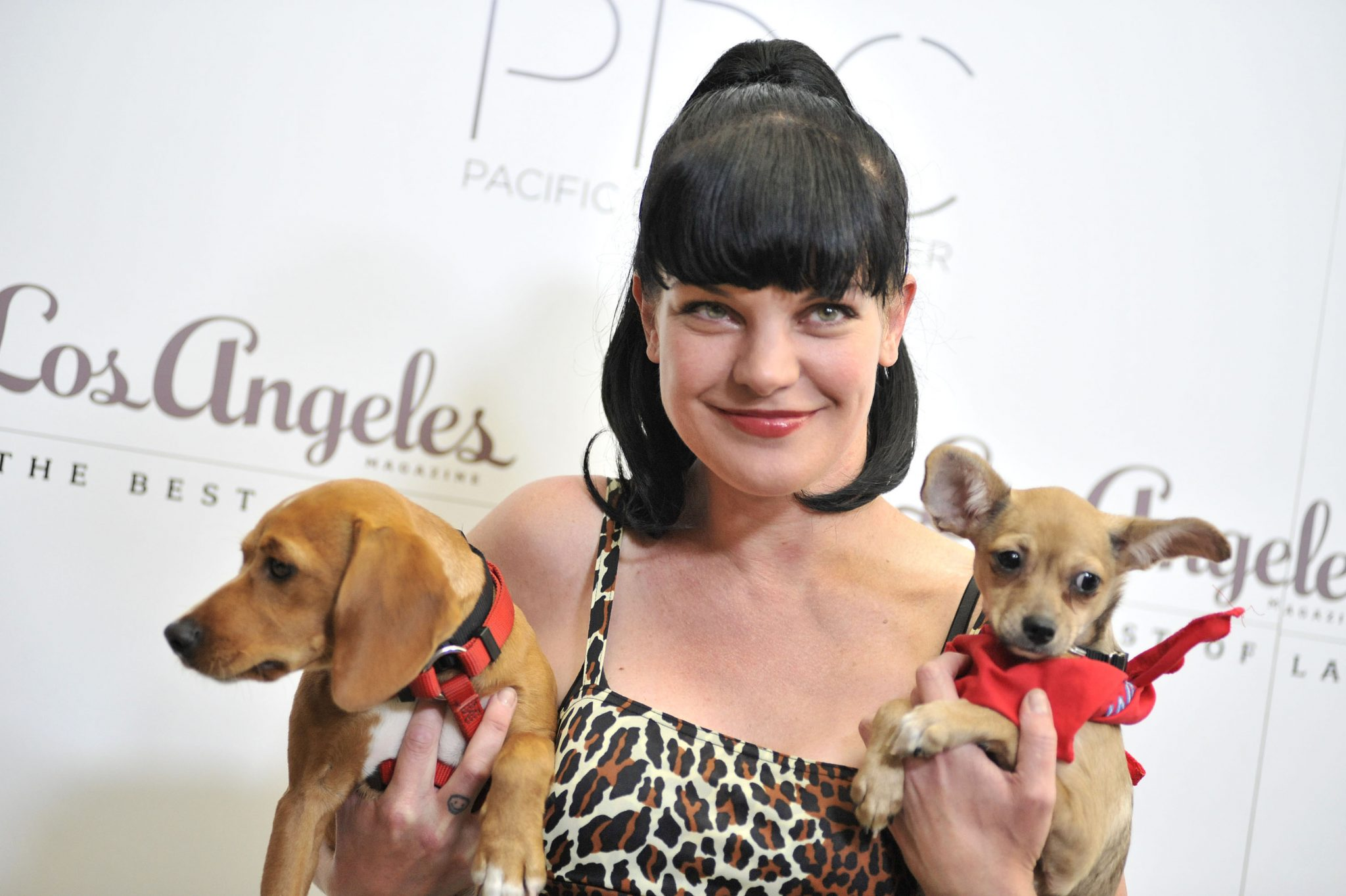 Pauley Perrette Loves Dogs