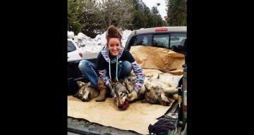 Natalie Palmer Dead Wolves.png