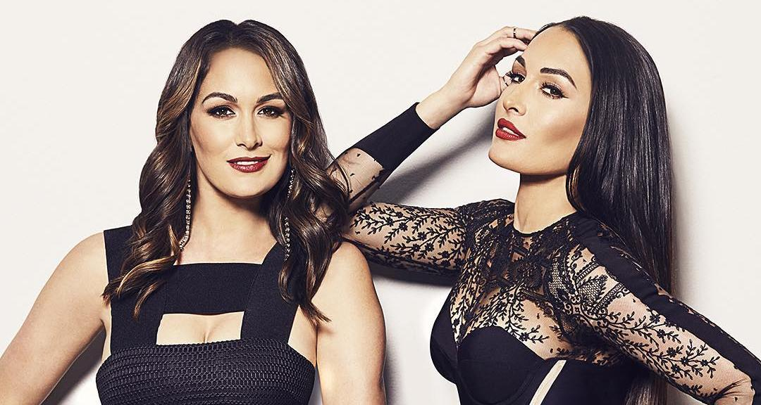 Pro-wrestling twins, Nikki and Brie Bella