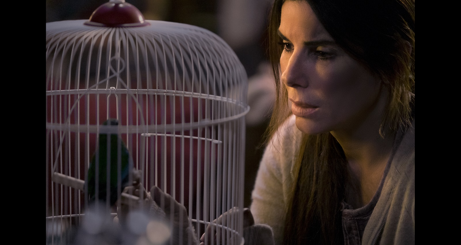 Sandra Bullock in Netflix's Bird Box