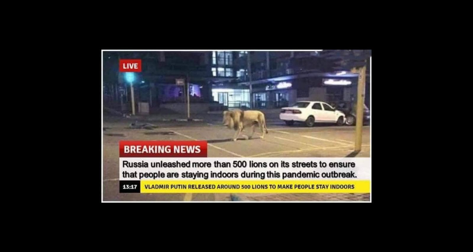 FACT CHECK: Did Russia Release Lions On Street During the Coronavirus Outbreak?