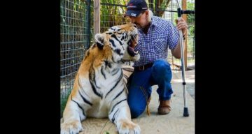"What Happened to ""Tiger King"" Joe Exotic's Knee?"